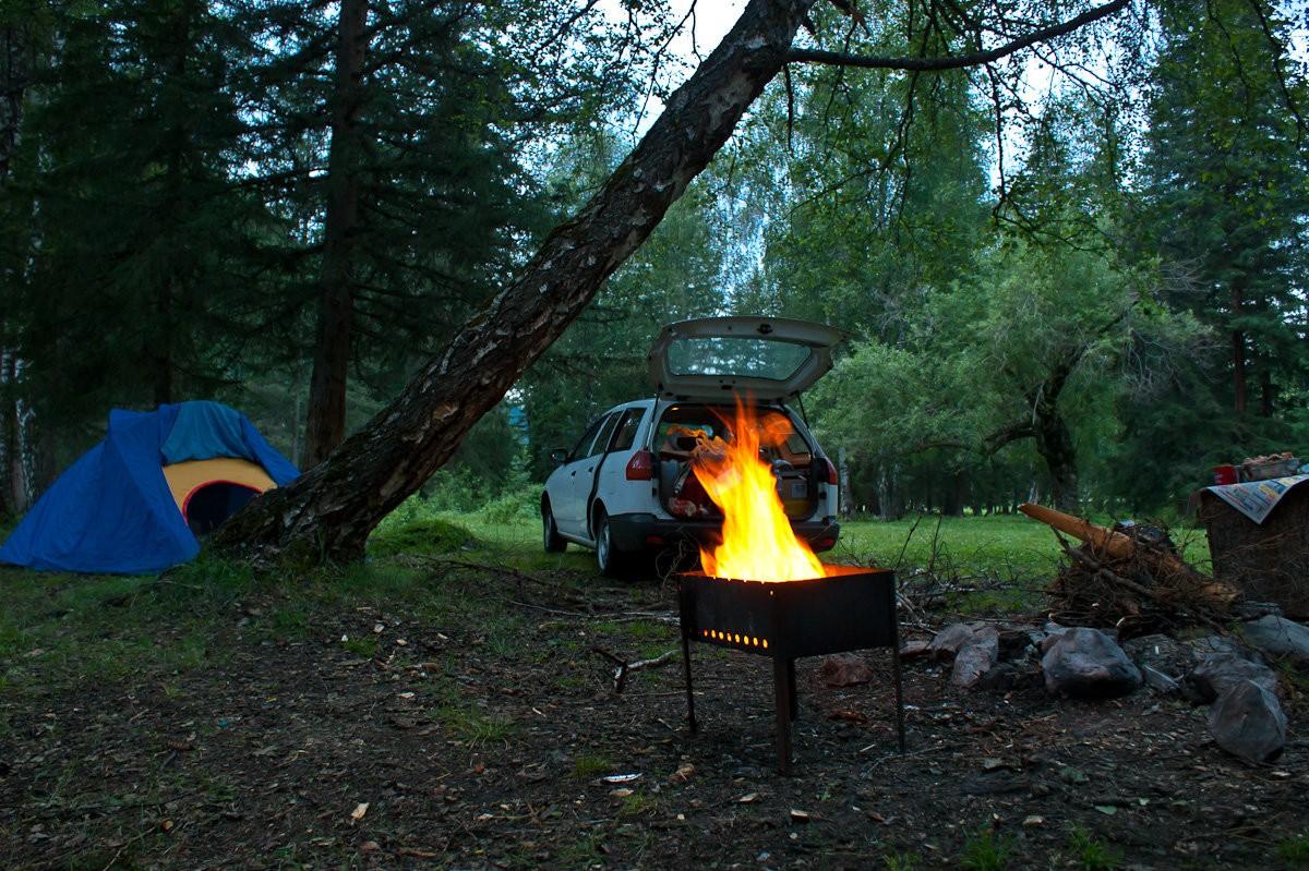 увиденной фото отдых на природе в лесу мне вам